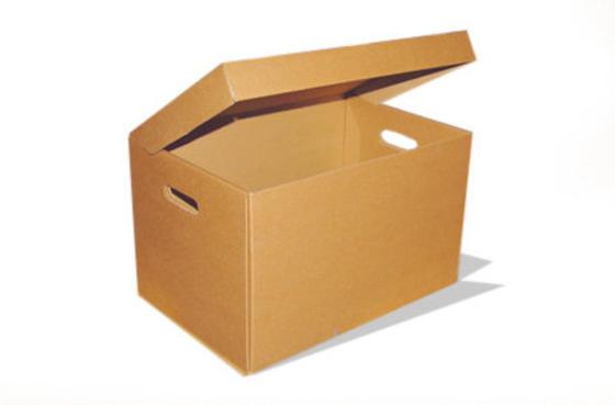 производители упаковки для яиц из картона